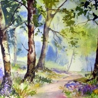Step by Step watercolor of a Bluebell Wood
